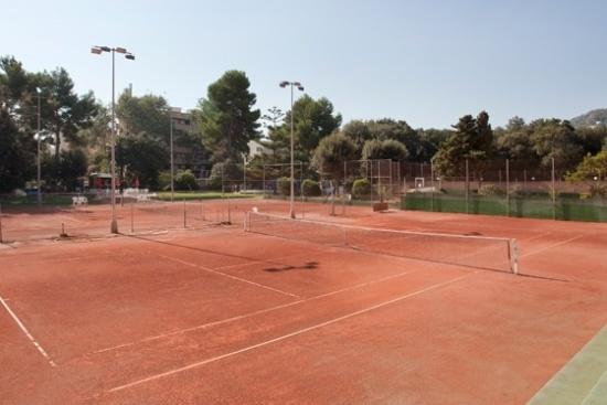 <b>7 Sandplatze im benachbarten Tennisclub