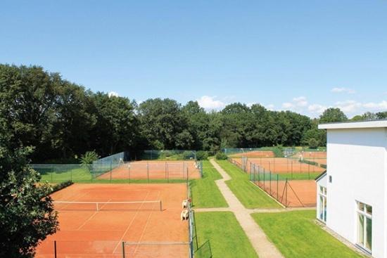 <b>12 Courts im Freien