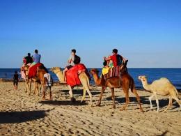 Robinson-Clubtester-Djerba-Kamelreiten